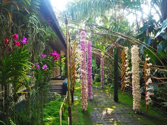 タイの花文化博物館002