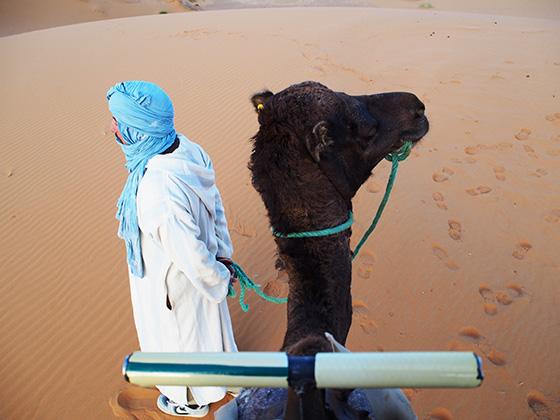 モロッコ サハラ砂漠 ラクダ 10