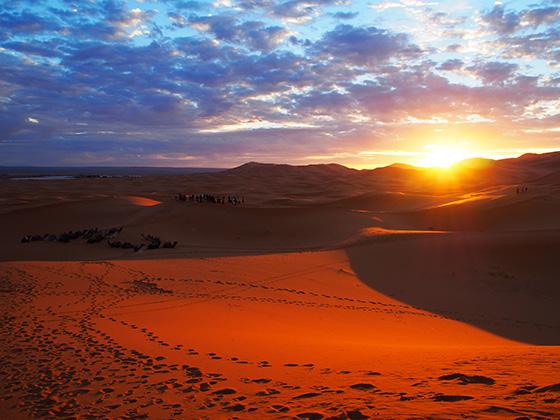 モロッコ サハラ砂漠 ラクダ 07