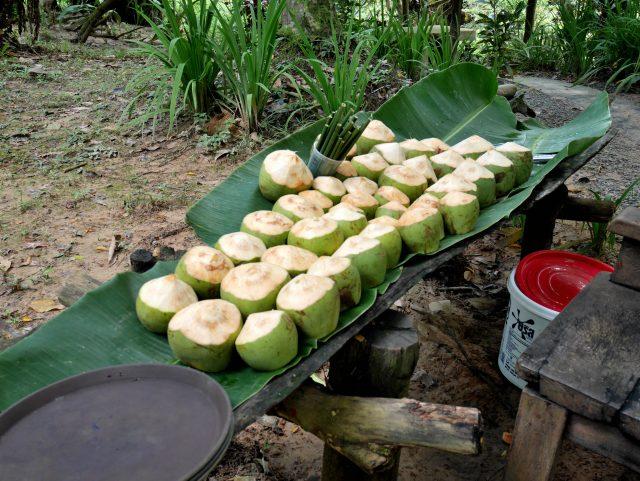 タイのクラビ温泉007