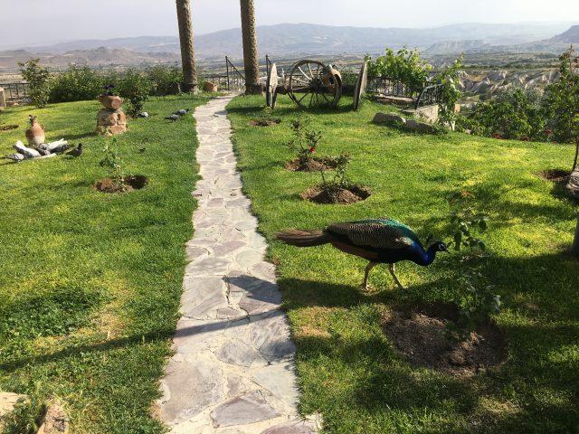 "Turkey_Museum_Hotel_010"""""