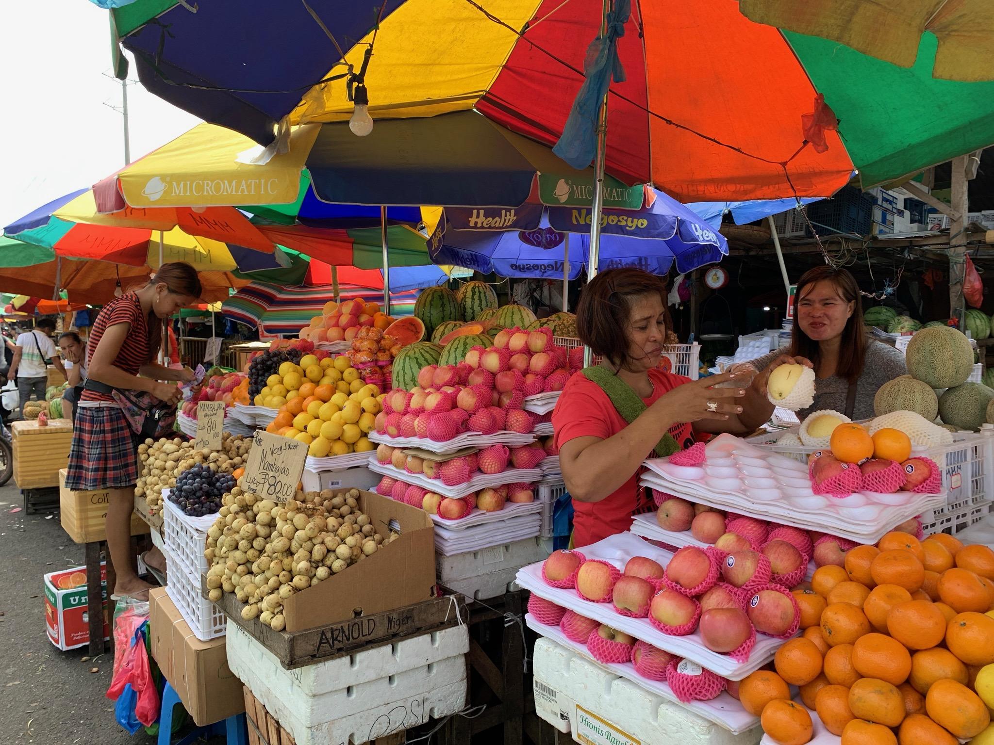 """Cebu_carbon_market"""""""""""
