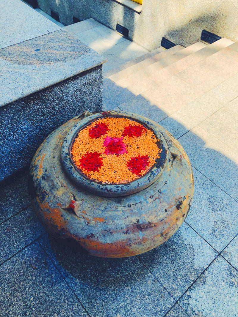 "Thai_Trisara_Flower_029"""""