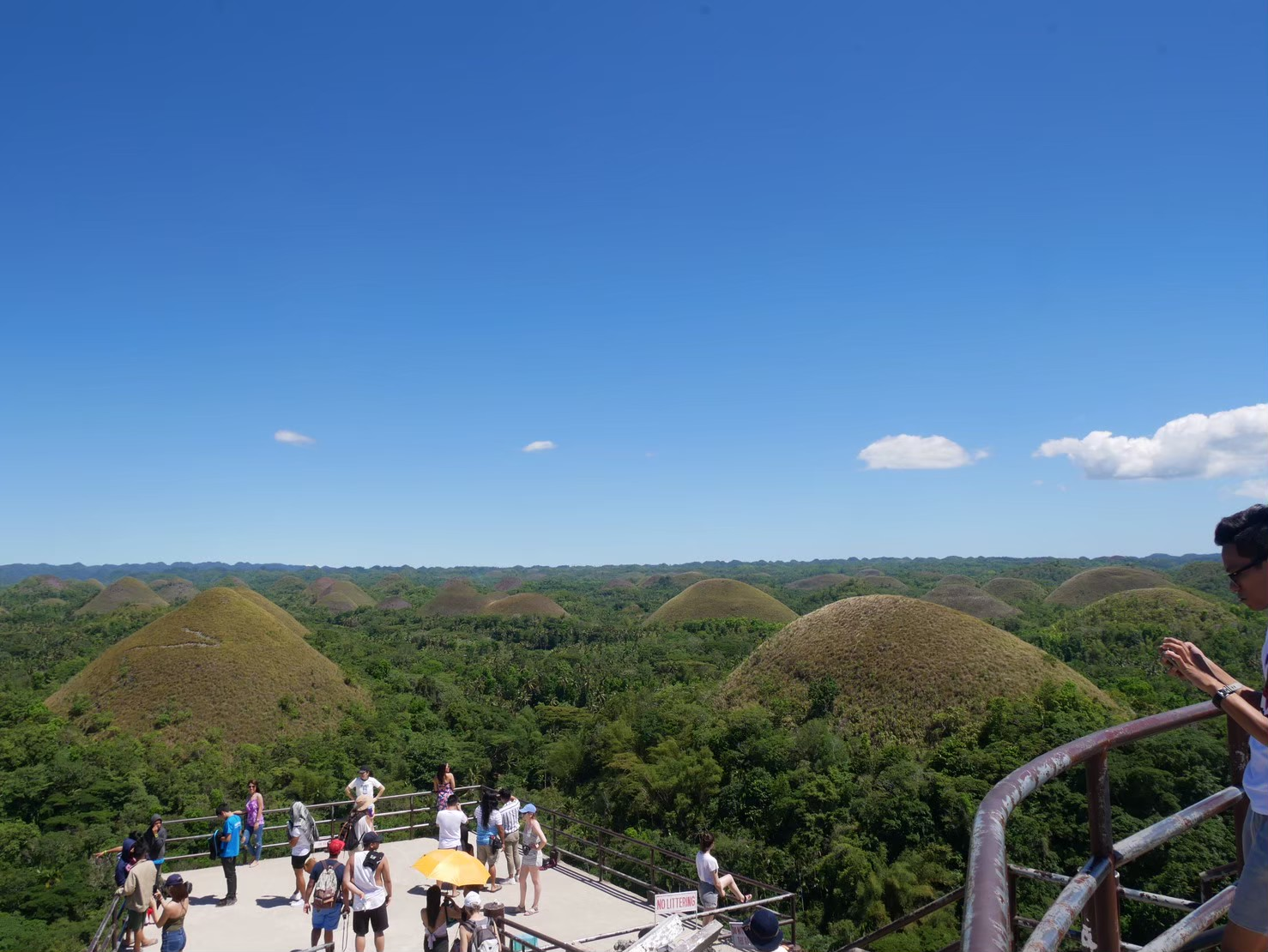 Bohol_chocolatehills_view_006""""