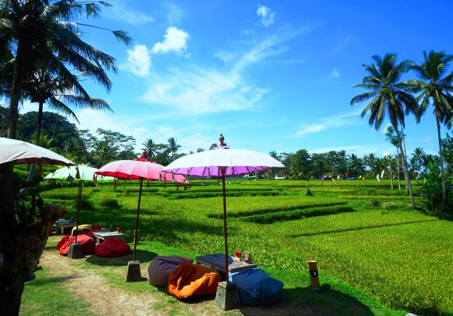 """Bali_Ubud_GreenKubuCafe_3"""""""""""