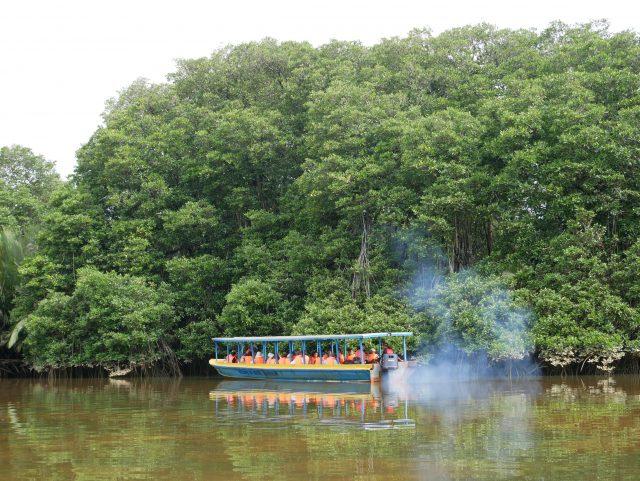 "BRUNEI_Mangrove-river-safari_water-taxi_4"""""