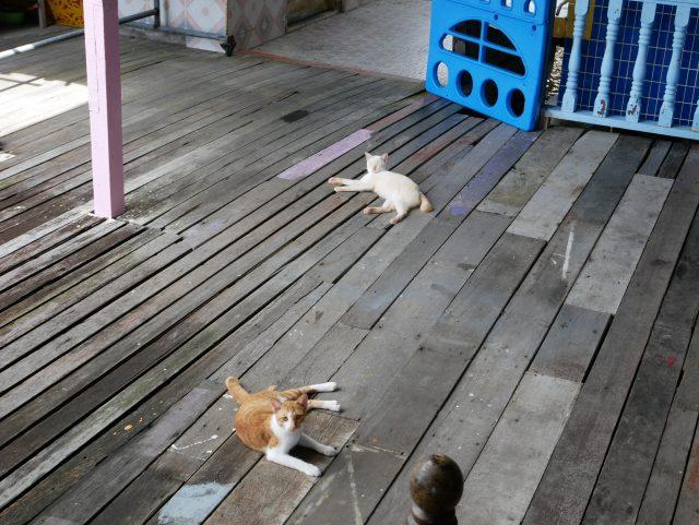 """BRUNEI_Kampong-Ayer_cat4"""""""""""