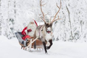 フィンランド「見逃せない」観光地16選!名物料理、夏・冬の楽しみ方も教えます!