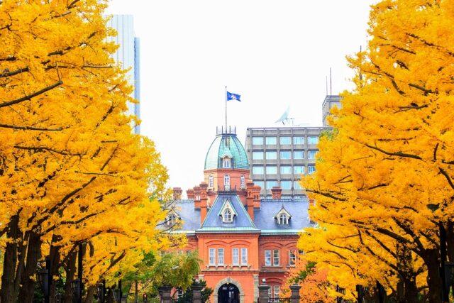 札幌 秋の紅葉