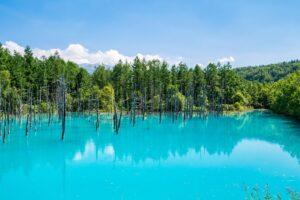 北海道【美しい絶景15選】一生に一度はみたい!大自然がつくる、春夏秋冬の風景