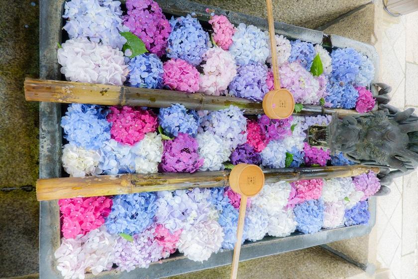 四季を彩る花手水2