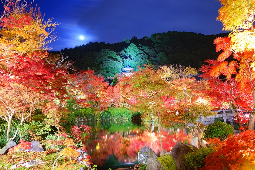 永観堂 禅林寺の紅葉