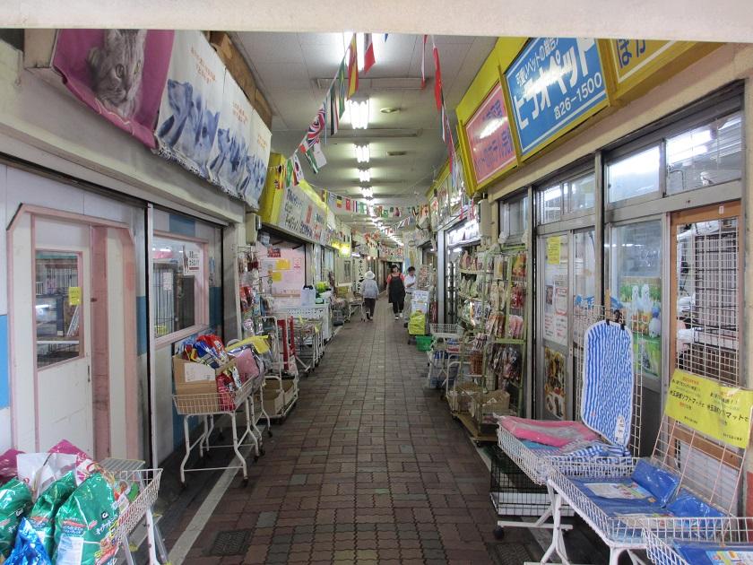 べっぷ駅市場