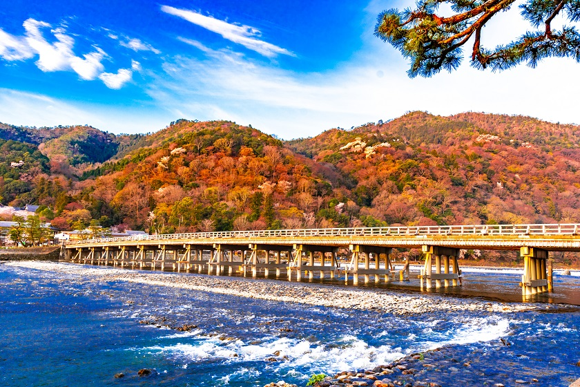 秋の渡月橋