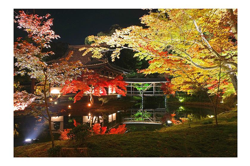高台寺-夜