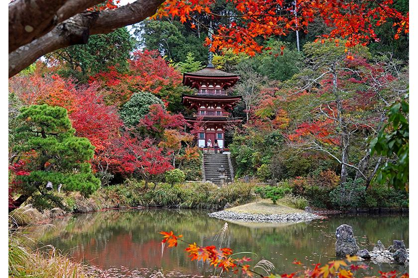 浄瑠璃寺本堂(国宝)
